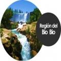 SSTT Región del BioBio
