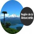 SSTT Región de La Araucanía